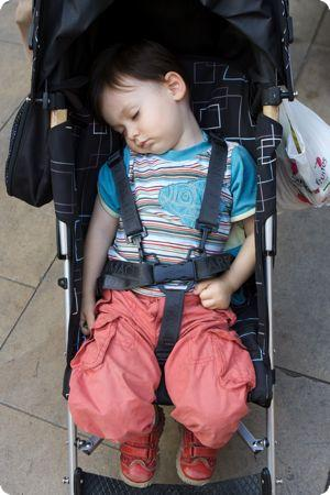 Tn-sleep_stroller_toddler-550x450-rd10